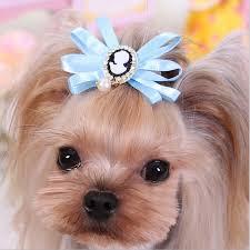 dog ribbon brand designs rhinestone pet hair pink yellow blue