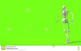 halloween stock footage crazy skeleton funny dancing gi render green screen footage