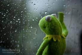 Kermit Meme Generator - kermit rainy day meme generator