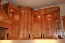 Veneer Kitchen Cabinet Doors Exotic Veneer Kitchen Cabinets Kitchen