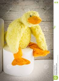Toilet Paper Funny by Toilet Paper With Funny Plush Duck Stock Photo Image 81943716