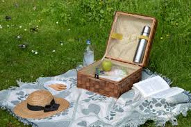 free images table grass book read lawn reading summer