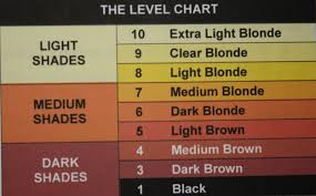 Hair Color Wheel Chart The International Hair Colour Chart Back2myroots