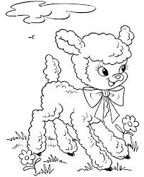 lamb clipart coloring pencil color lamb clipart coloring