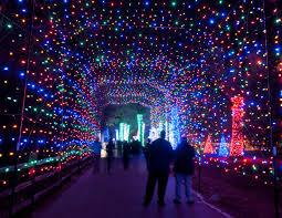 Sparkle Christmas Lights by Detroit Zoo U0027s U0027wild Lights U0027 Holiday Display Starts Next Weekend