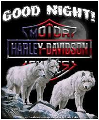 Nighty Night Meme - pin by jane henry on harley good night pinterest