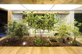 giardini interni casa giardini interni stili di giardini consigli per giardini interni