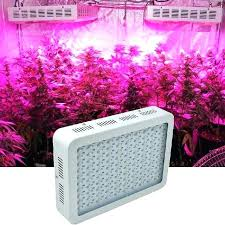 buy lights near me where to buy grow lights th cheap led canada aankom com