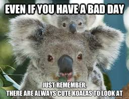 Bad Day Meme - even if you have a bad day just remember there are always cute