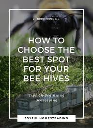 Raising Bees In Backyard by Beekeeping Beginners Find The Best Beehive Location For Your