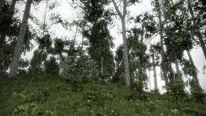 foliage mental ray render test by antoine desjardins at coroflot com