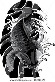 Black And Grey Koi Carp - koi stock images royalty free images vectors