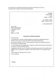 sales assistant job application cover letter example learnist for