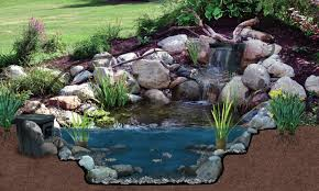 backyard pond kits canada home outdoor decoration