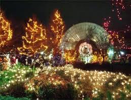 Chickasha Lights Christmas Lights Onie Project