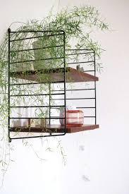 Wohnzimmer Junges Wohnen Mein Zuhause Wohnen Mit Pflanzen Ikea Ivar Grüne Wohnzimmer
