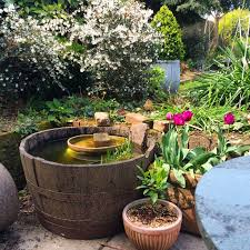 How To Build A Pond In Your Backyard by How To Make A Mini Wildlife Pond The Middle Sized Garden