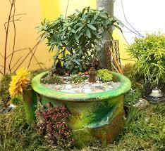 february 2012 the mini garden guru from twogreenthumbs com