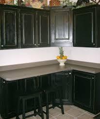 black cabinet kitchen ideas cabinet amusing black cabinet design who helped organize the