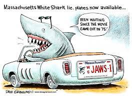 granlund cartoon white shark license plates ma only news