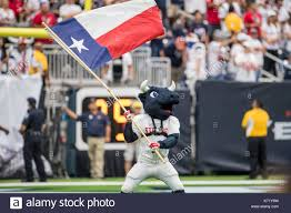 Houston Texans Flags Houston Texans Mascot Stock Photos U0026 Houston Texans Mascot Stock