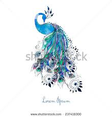 peacock stock images royalty free images u0026 vectors shutterstock