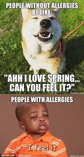 Feel Meme Pictures - can you feel the spring coming meme guy