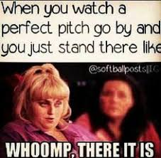 Funny Softball Memes - funny jokes about softball very funny pics funny pictures memes