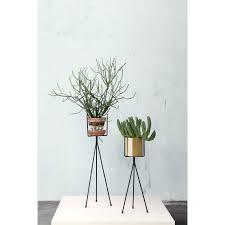 Large Indoor Plants Plant Pottestativ Large I Gruppen Innredningsdetaljer