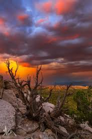 New Mexico scenery images 508 best beautiful scenery images landscapes jpg