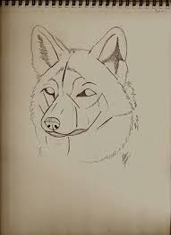 guides to drawing wolves 4 steps