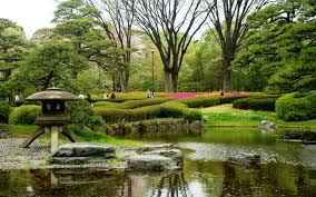 nature gardens flowers trees spring water japanese japan pictures
