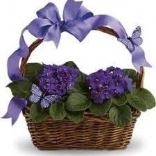 burlington florist photos for burlington florist yelp