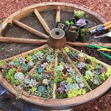25 beautiful wagon wheel garden ideas on pinterest rustic