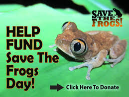 save the save the frogs day april 29 2017
