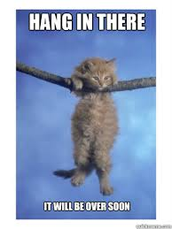 Meme Kitty - hang in there kitty memes quickmeme