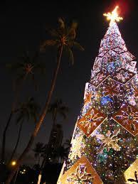 honolulu christmas lights christmas lights decoration
