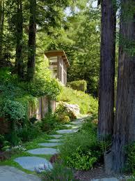 mill valley cabins design by feldman architecture architecture