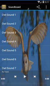 Barn Owl Sounds Owl Sounds Android Apps On Google Play
