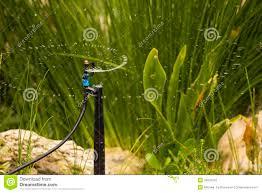water sprinkler stock photos image 30872053