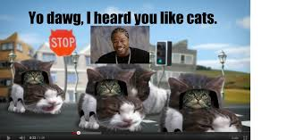 Yo Dawg Know Your Meme - image 196437 xzibit yo dawg know your meme i heard you like cats