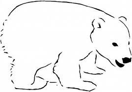 photos polar bear 2 coloring pages polar bear clip art