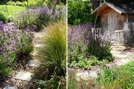Family Garden - enticing family garden in greystones co wicklow u2013 tim austen