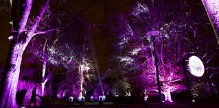 tree lights at the morton arboretum clay paky clay paky mythos fixtures make u s debut at the morton
