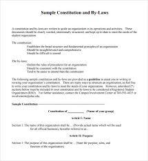 ngo bylaws template