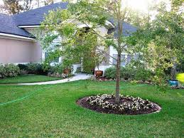 Landscaping Ideas For Large Backyards by Cheap Landscaping Ideas For Small Backyards U2014 Jen U0026 Joes Design