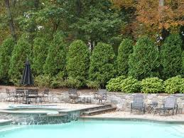 Landscape Design Online by Garden Design Garden Design With Modern Landscape Design U