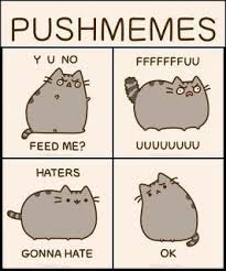 Pusheen The Cat Meme - pusheen memes pusheen cat s pinterest pusheen memes and