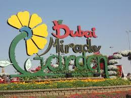 entrance picture of dubai miracle garden dubai tripadvisor