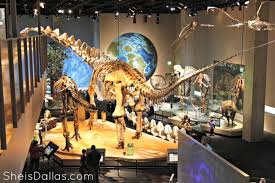 perot museum of nature and science dallas activities